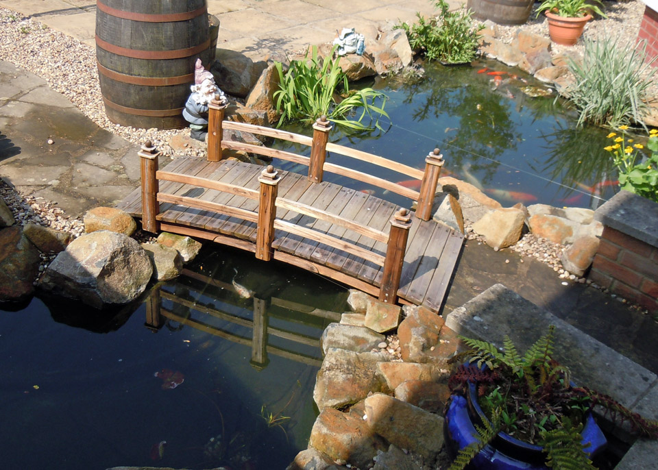 Water wizard garden ponds water features landscaping for Koi pond design with bridge